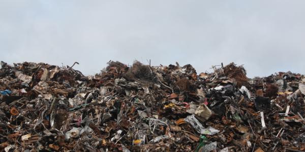 Emmet Schimmels Tasten Plastic Aan