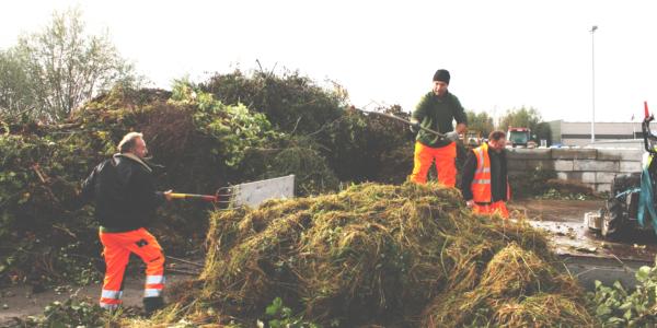 Biomassa Verzamelen